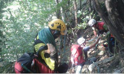 Ventiduenne  di Fiorano muore cercando funghi