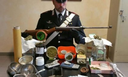 Produceva anche l'olio di hashish: arrestato pusher