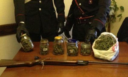 Nei barattoli della marmellata quasi mezzo chilo di marijuana: denunciato