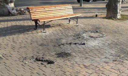 Ancora vandali in azione, danneggiati gli arredi urbani in piazza Martiri della Libertà