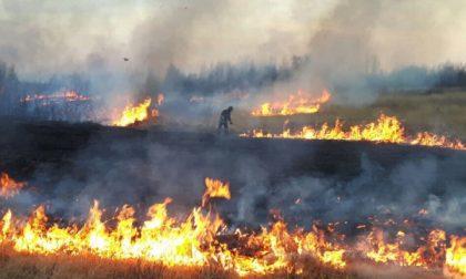 Continuano gli incendi nel Parco delle Vaude