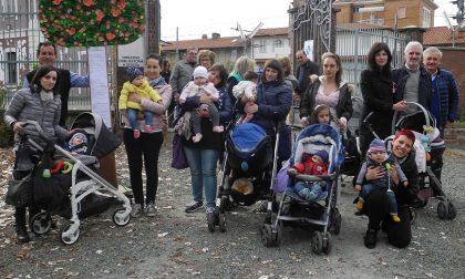 Festa degli Alberi per i bimbi nati nel 2016
