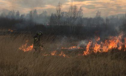 Nuovo incendio in borgata La Piè