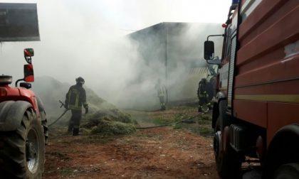 Violento incendio distrugge un fienile