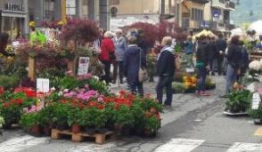Grande successo di Florarte a Cuorgnè