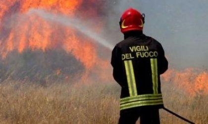 Incendio boschivo in Valle, intervento dei pompieri