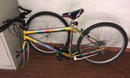 Ladro di biciclette beccato dai carabinieri