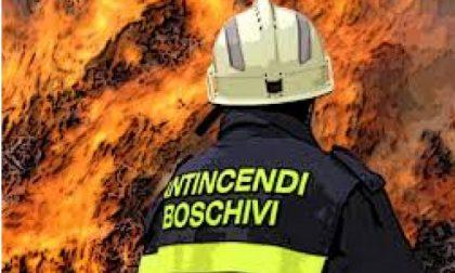 I boschi bruciano: l'allarme Coldiretti