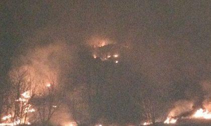 I boschi in fiamme