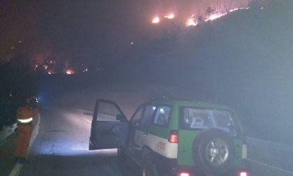 Incendi Canavese bruciano i boschi