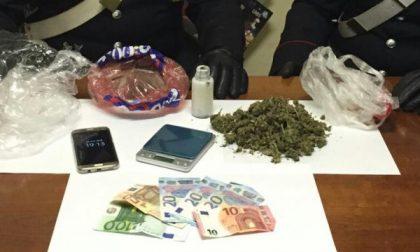 Marijuana in cantina arrestato uomo di 31 anni