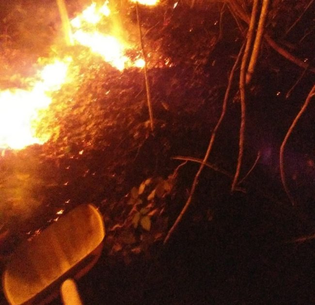 Incendio distrugge negozio in zona Cereggi