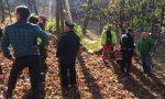 Boscaiolo muore travolto da un albero | FOTO