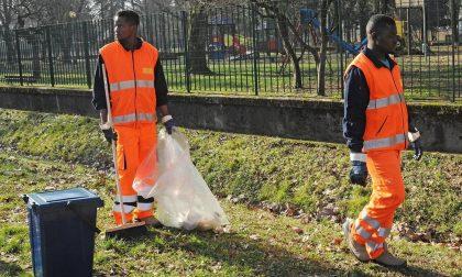 Profughi volontari per ripulire la campagna