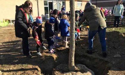 Festa dell'albero a Leini con i bambini della Rodari