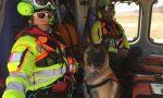 Unità cinofile da valanga in servizio | Foto e Video