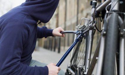 Ladro di bici sveglia condomino