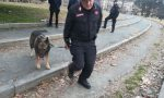 Droga nascosta al Valentino bliz dei carabinieri | Foto