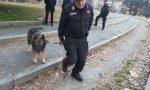 Controllo straordinario al Valentino da parte dei Carabinieri | Foto