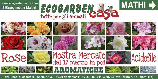 La primavera arriva prima da Ecogarden Mathi - il Canavese