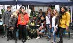 Una mimosa e una panchina rossa in omaggio alle donne