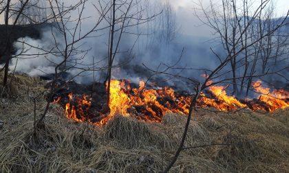 Incendio Canischio inizia la stagione dei roghi