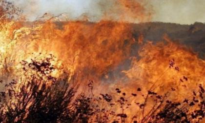 Provoca incendio bruciando sterpaglie, denunciato torinese