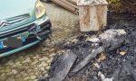 Data alle fiamme siepe auto danneggiata