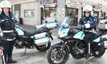 Sequestrate buste di plastica illegali | 20mila euro di multa