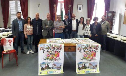 Florarte 2018 Castellamonte Cuorgnè Rivarolo e Favria uniscono le forze