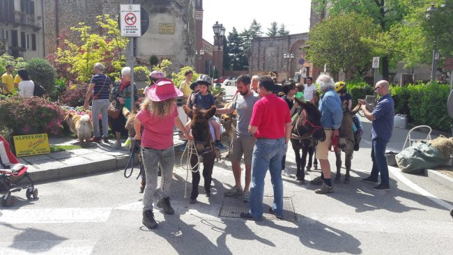 Florarte prima tappa oggi a Castellamonte