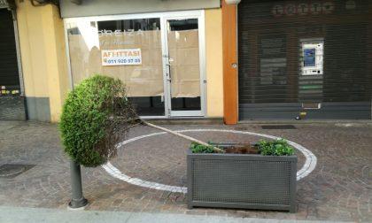 Atti vandalici nel centro di Ciriè