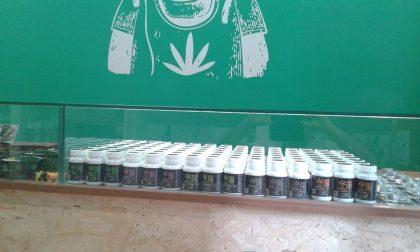 Negozio marijuana (legale) aperto a Ivrea