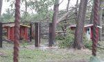 Casa del Cane Vagabondo, il rifugio distrutto dal maltempo chiede aiuto