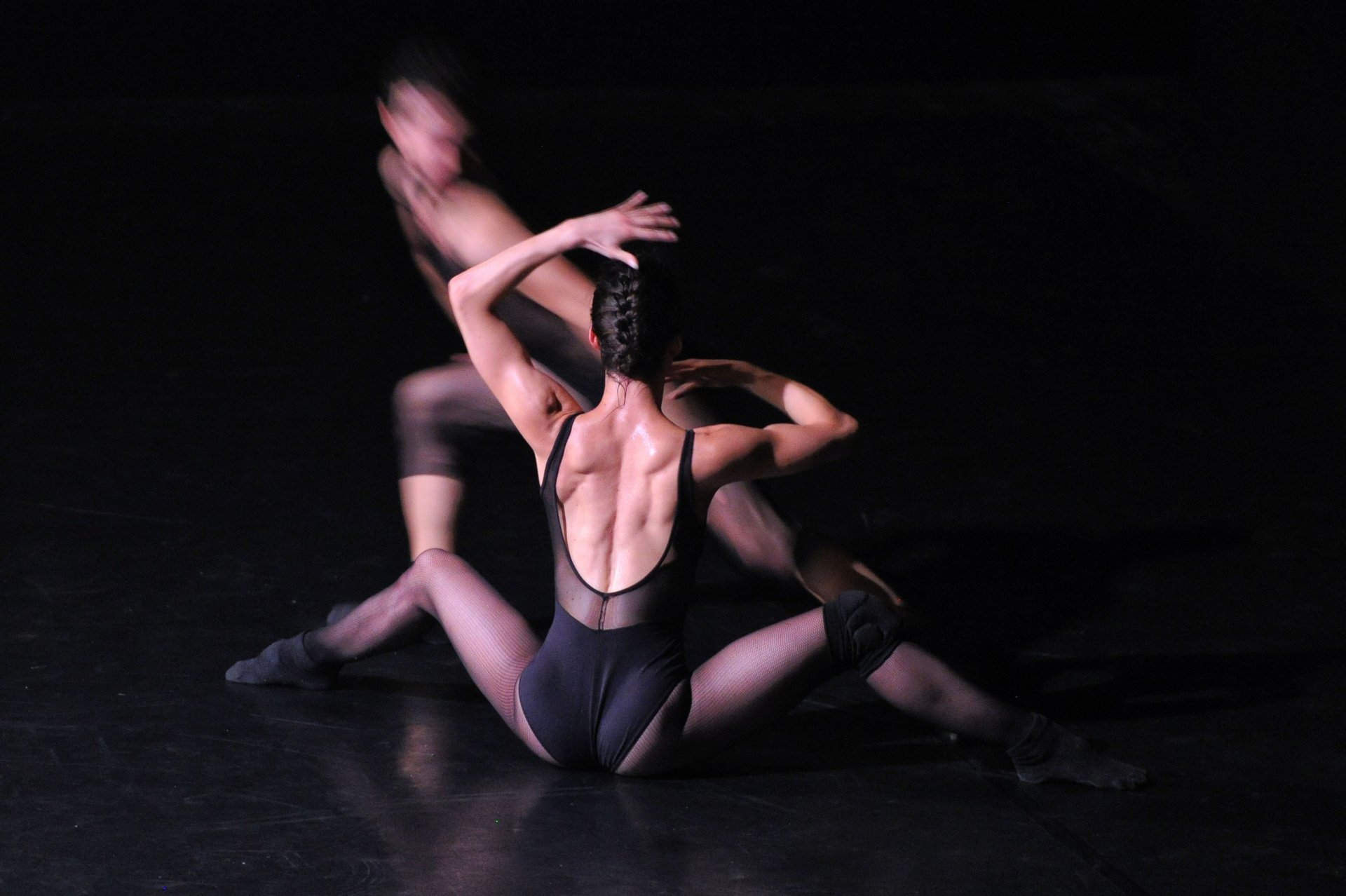 Risultati immagini per egri bianco danza apparizioni