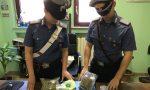 Controlli straordinari dei carabinieri per Alta Felicità, sequestrata droga