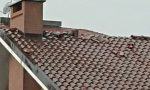 Nubifragio e una tromba d'aria a Volpiano: alberi spezzati e danni ad abitazioni