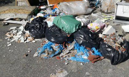 Tagga il maiale a Favria: caccia a chi abbandona rifiuti nell'area industriale