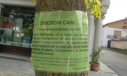Avvisi a San Giusto per raccogliere le deiezioni canine