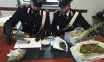 Trovato con 200 grammi di marijuana in casa: 34enne canavesano denunciato