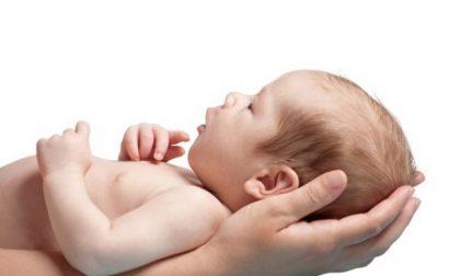 Uno studio torinese mette in luce le straordinarie capacità dei neonati