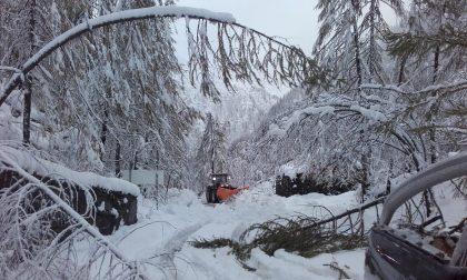 Prima nevicata a Ceresole oggi   FOTO