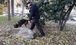 Controlli a tappeto dei carabinieri: fermati due corrieri con 7kg di marijuana | FOTO