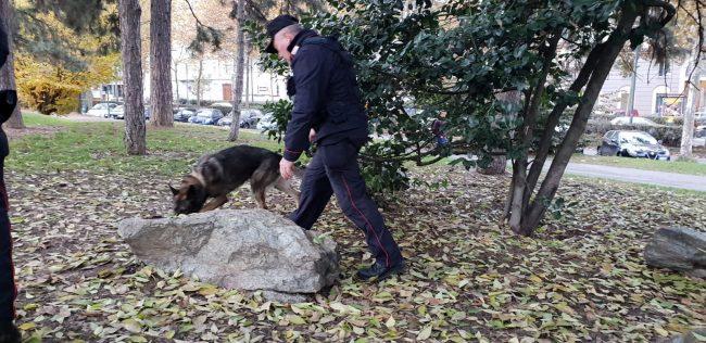Controlli a tappeto dei carabinieri: fermati due corrieri con 7kg di marijuana