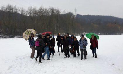 Camminare fa bene un successo i gruppi in Valchiusella
