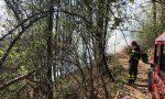 Incendio a Priacco: emergenza rientrata grazie a pompieri, Aib e carabinieri