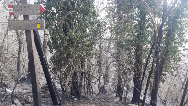 Brucia la terra sopra Belmonte