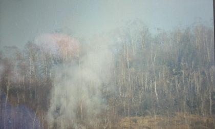 Nuovo incendio boschivo