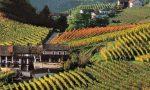 Danimarca e Norvegia, due paesi strategici per i vini del Piemonte