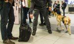 Orologi di lusso, Rolex e Patek Philippe, sequestrati dalla finanza all'aeroporto di Caselle